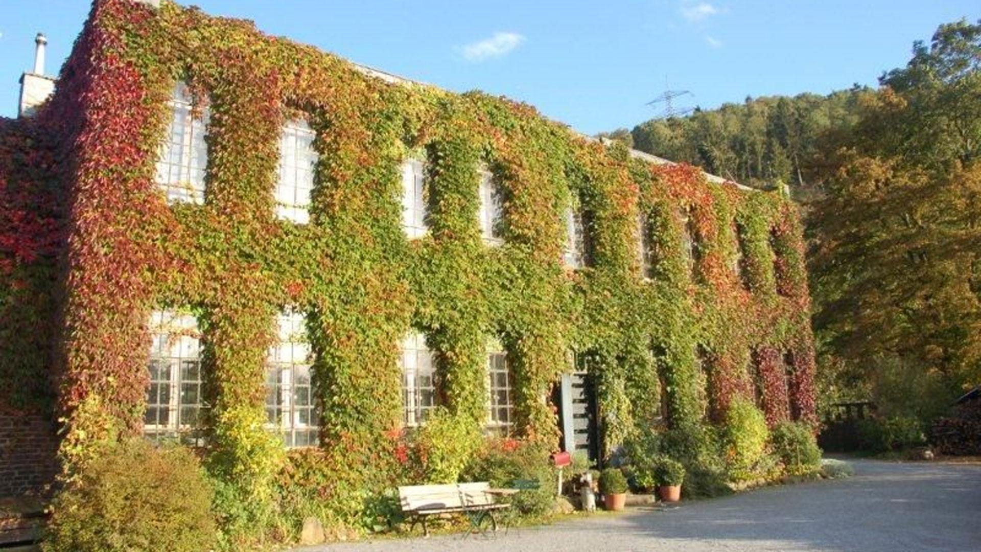 Im Herbst zeigt sich der Kotten vielfarbig. Foto: Lisa Demmer